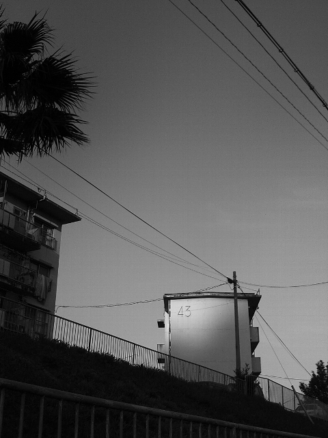 Sunp0132
