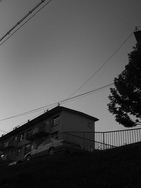 Sunp0147