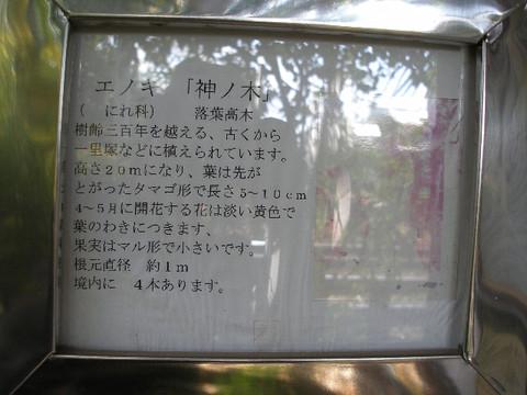 Pb200252