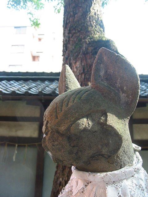 久々の京都<6>街中の鎮守の森の美コンの相方