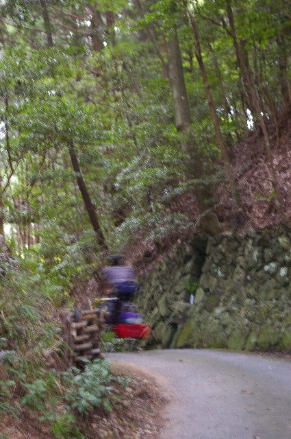 三田・篠山徘徊(野営付)<15>/小さな峠の石仏