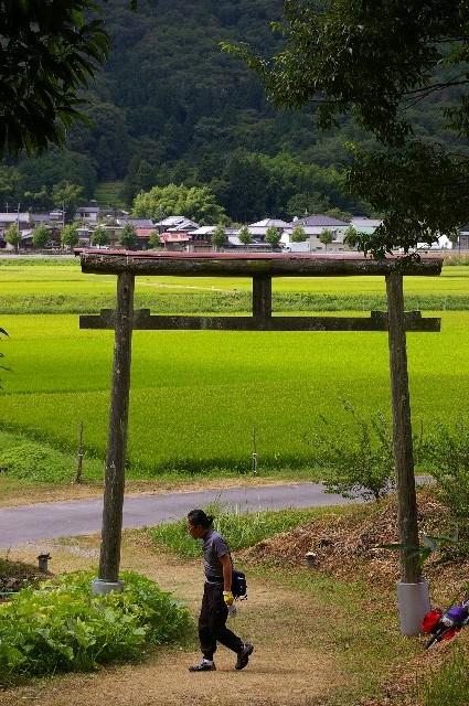 三田・篠山徘徊(野営付)<17>/朽ち木鳥居