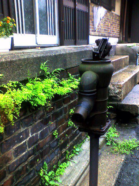 昔は、井戸の水をまいといやした。。。
