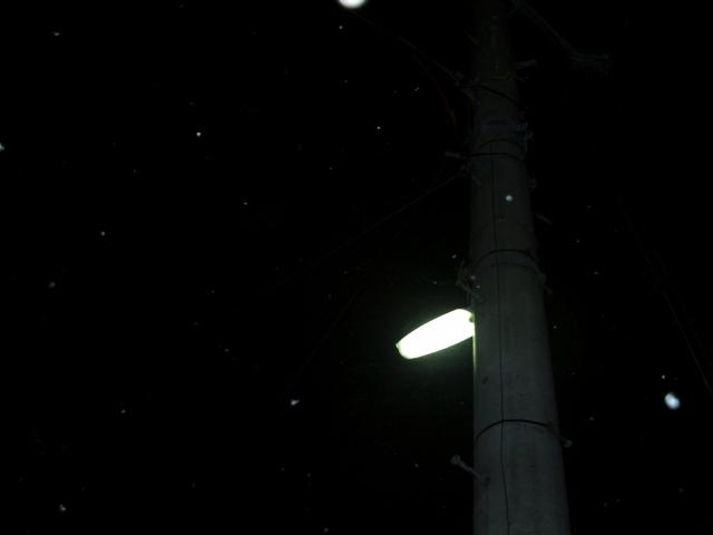 季節のメモ:3月29日雪ちらり