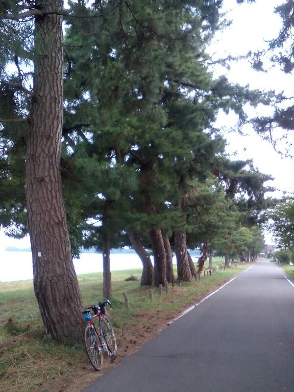 【滋賀県】夏のマキノ町