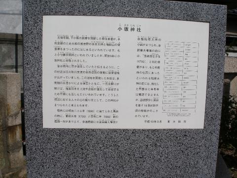 Pa230019